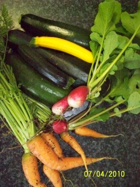 04.07.2010 crop